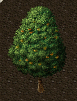 Peach tree.png