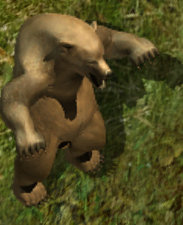 Grizzly bearkr.png