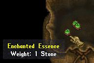Enchanted essence.jpg