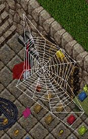 Giant spiderweb.jpg