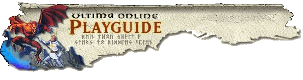 Play guide banner.png