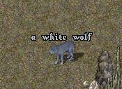 White Wolf.png