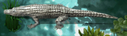 Alligatorkr.png