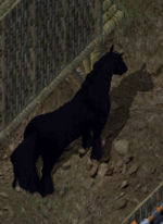 Pet Guide - UOGuide, the Ultima Online Encyclopedia